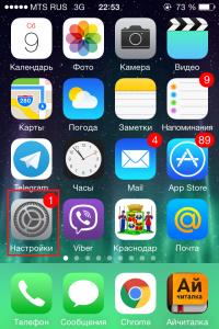 пункт настройки в iphone